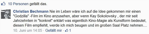 Bechmann_Facebook_(c)_Kay_Sokolowsky