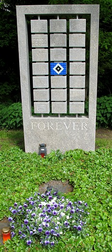 HSV_forever_(c)_Kay_Sokolowsky